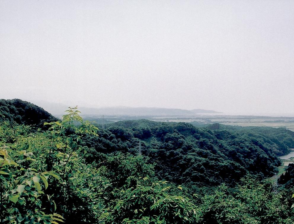 顕法寺城跡